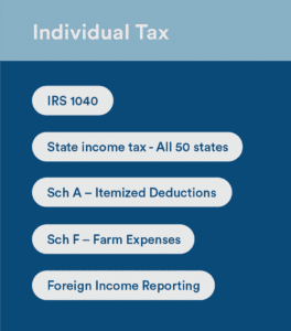 individual tax preparation 1040
