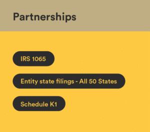 partnerships irs 1065